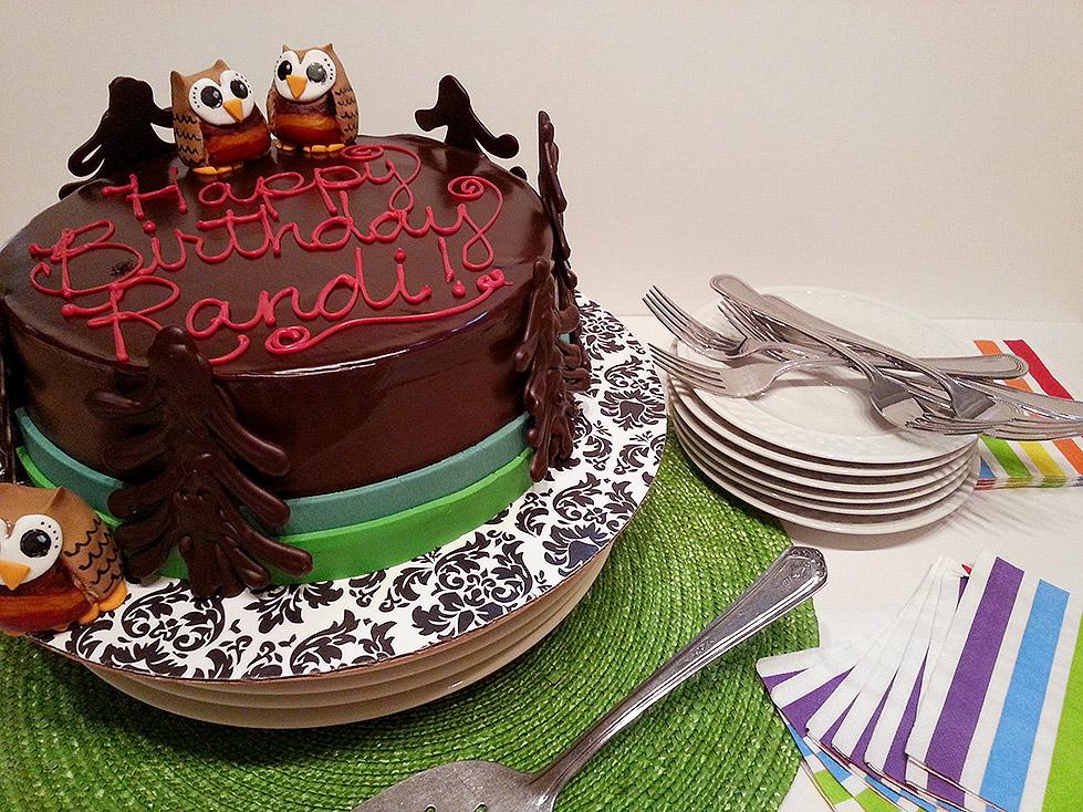 An Owl Cake For Randi Oven Apron