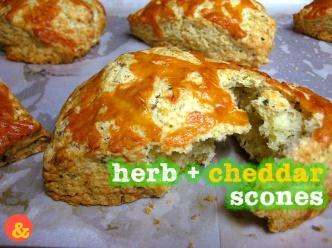 HerbCheddarScones